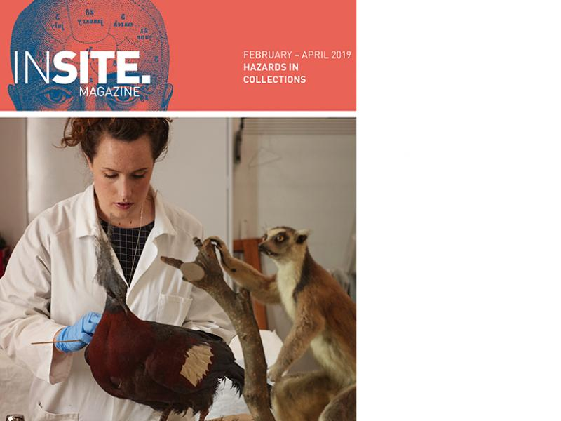 INSITE cover / Hazards in Collections